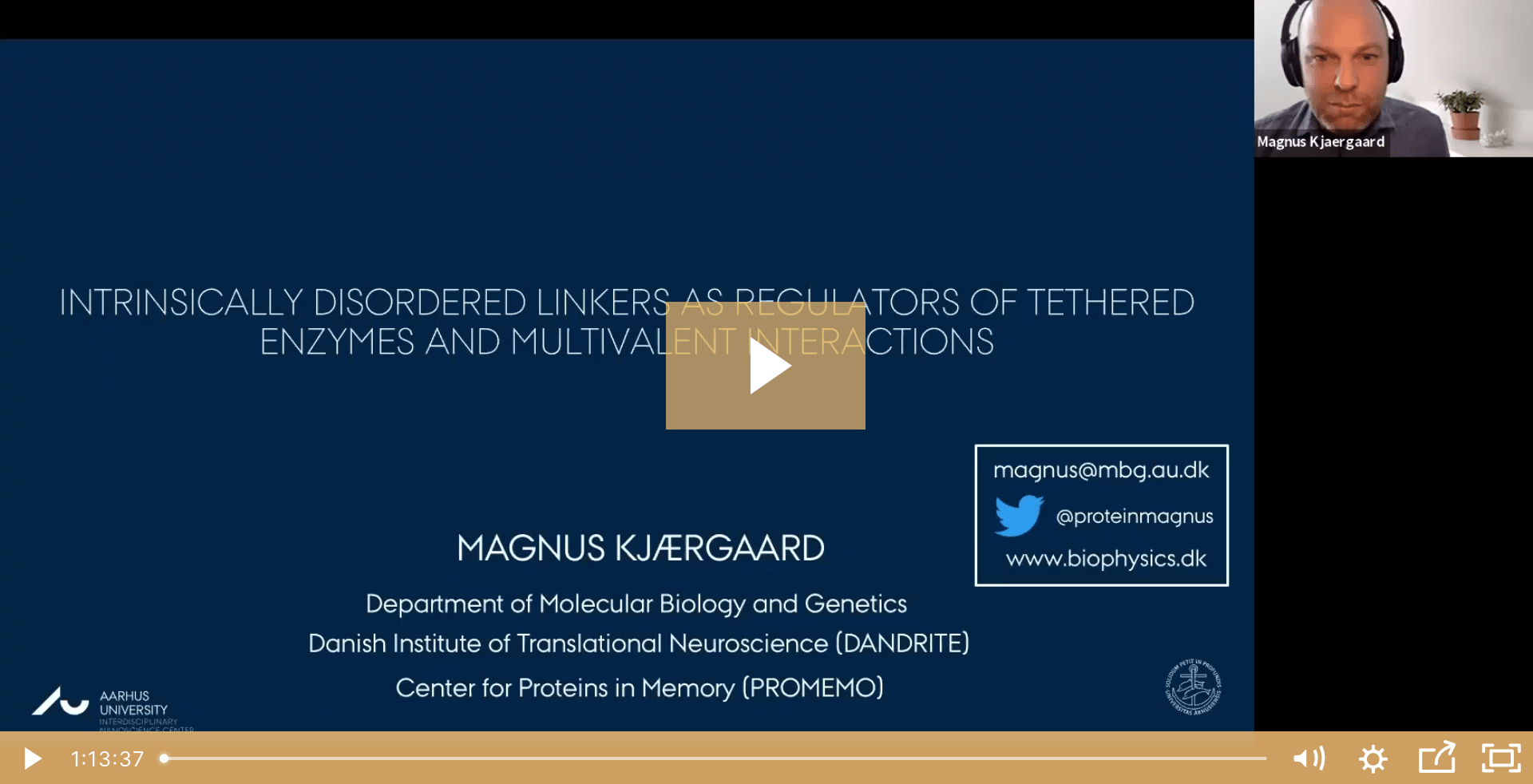 Magnus Kjærgaard on Tethered Enzymes, Multivalent Interactions—and Tigers