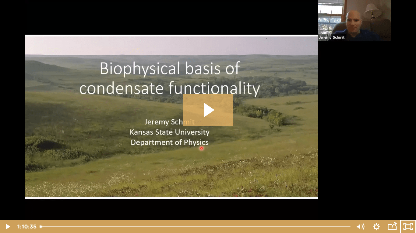 Jeremy Schmit on the biophysical basis of condensate functionality