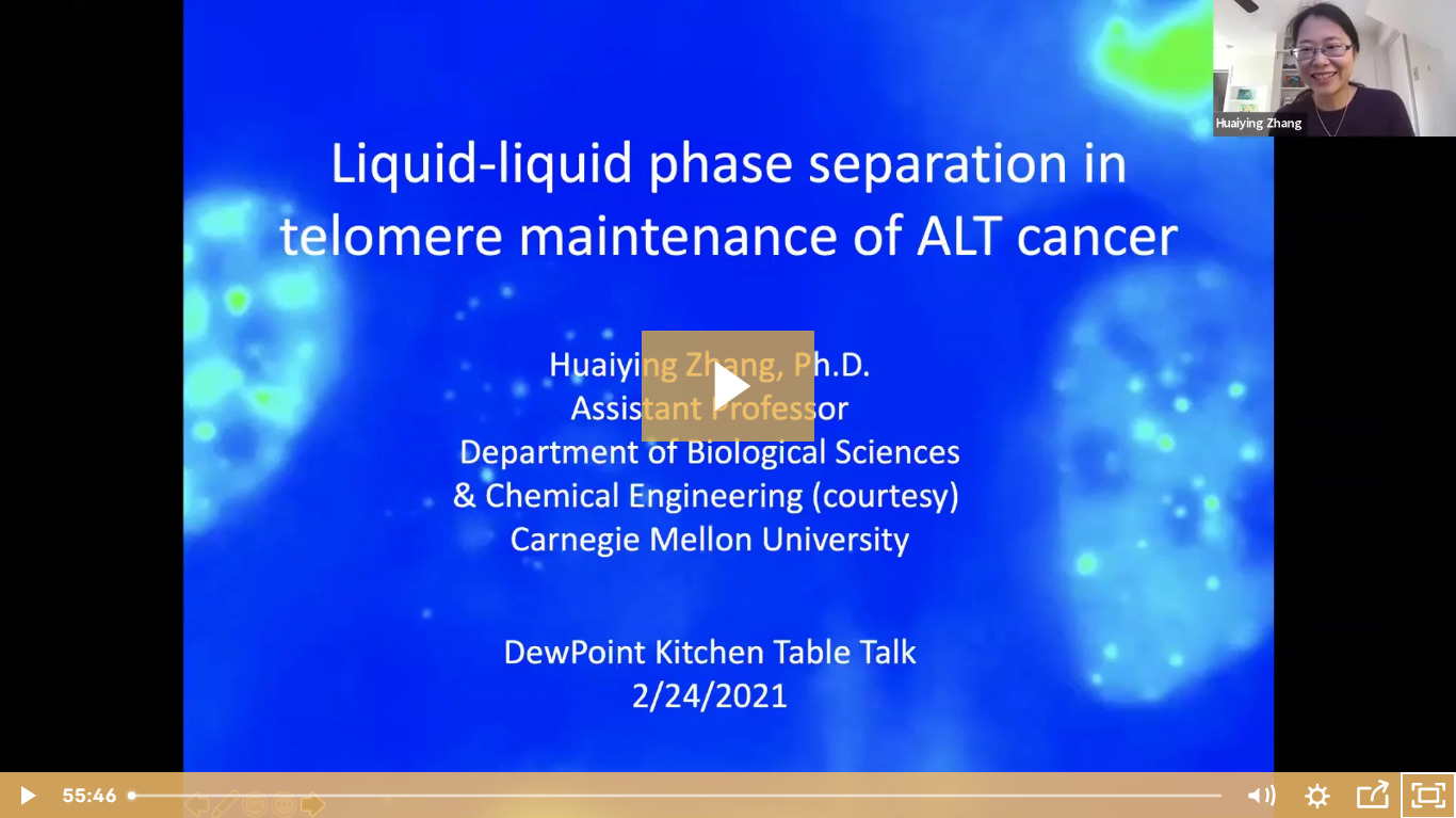 Huaiying Zhang on LLPS in ALT Cancer